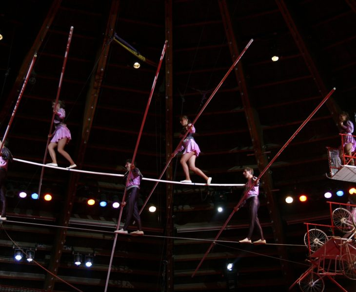 Spring Circus Arts Festival – March 1st > April 5th, 2019