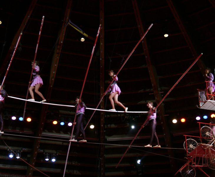 Festival des arts du cirque Spring – 1er Mars > 5 avril 2019