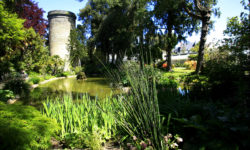Botanical gardens of the Emmanuel Liais Park in Cherbourg