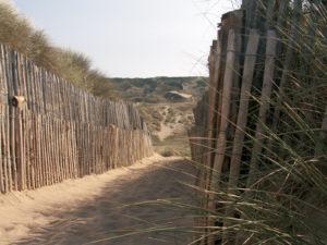 Dunes de Biville OT LA HAGUE