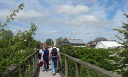 Parc des Marais du Cotentin