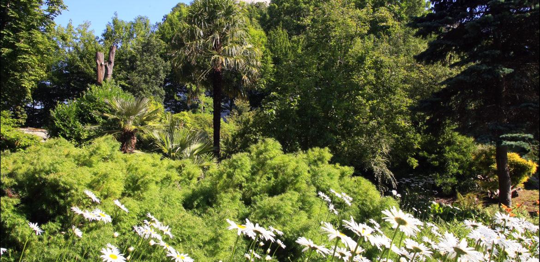 Jardin botanique Montebello - _JME9044-jardin-cherbourg-normandie@villedecherbourg