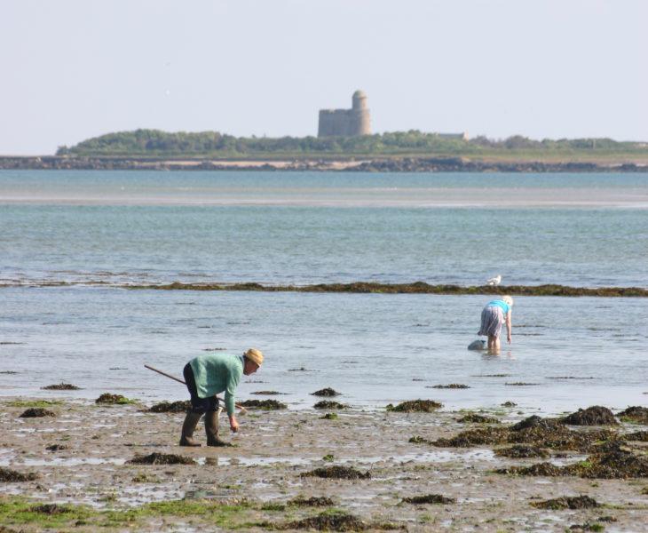 5 raisons pour partir à la découverte de Saint-Vaast-la-Hougue dans le Cotentin
