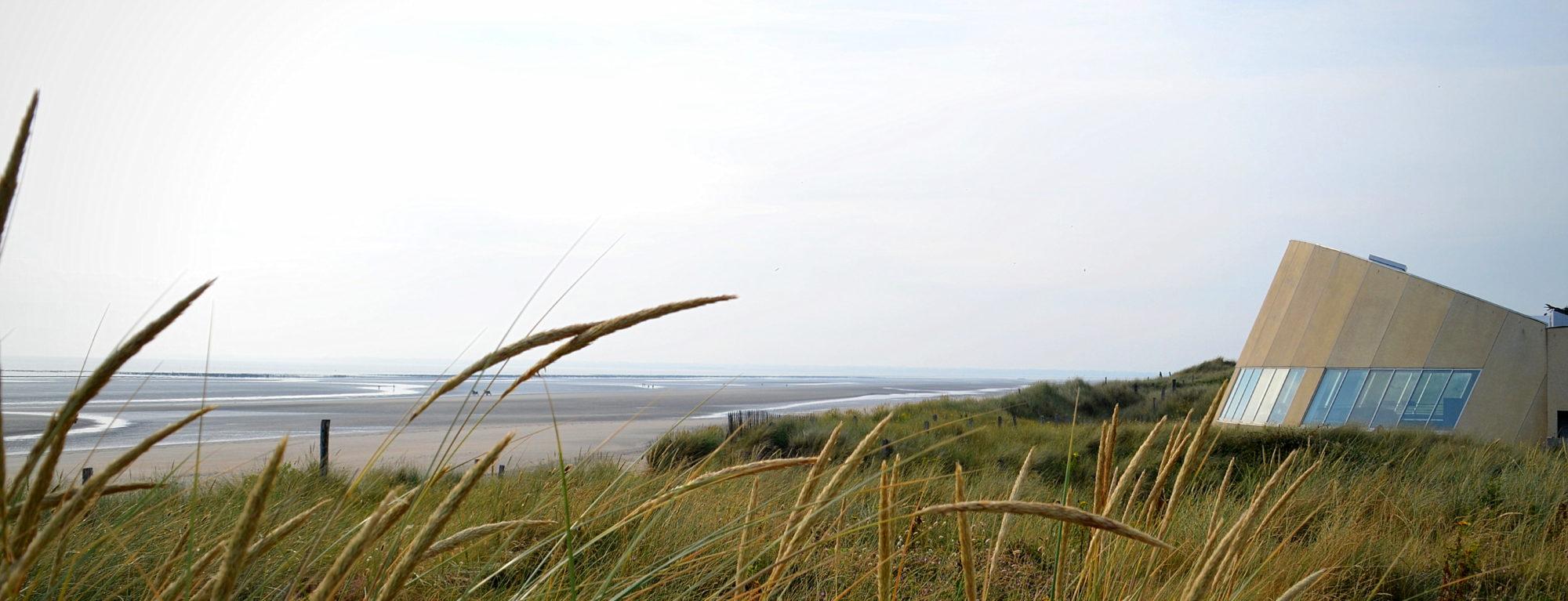 Laissez-vous conter l'Histoire du Cotentin au cœur des plages du Débarquement