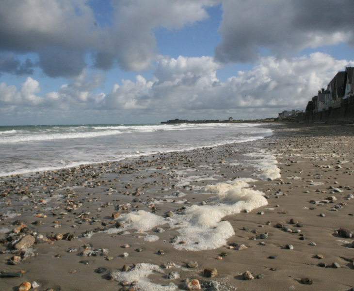 Le Cotentin, un endroit idéal pour la pêche à pied et en bord de mer