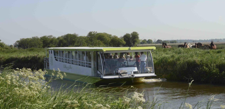 La Rosée du Soleil - Excursion bateau la rosée du soleil marais du cotentin normandie