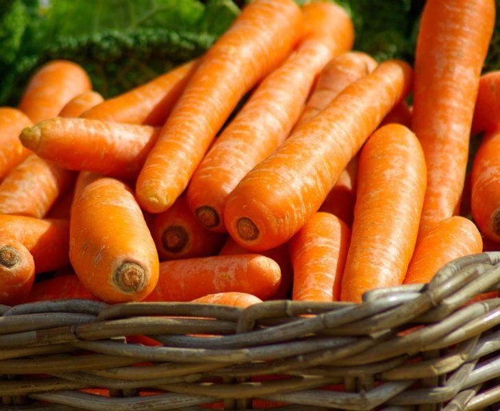 Goûtez les bons produits maraîchers, les fruits et les légumes produits dans le Cotentin