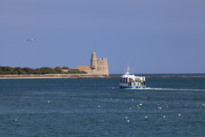 ile Tatihou - Bateau amphibie -marée haute©D.Daguier-CD50 - cotentin - normandie