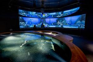 aquarium cité de la mer cherbourg@B.Almodovar