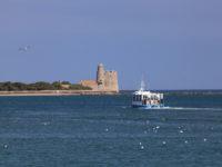 ile-Tatihou-Bateau-amphibie- Cotentin Saint Vaast La Hougue