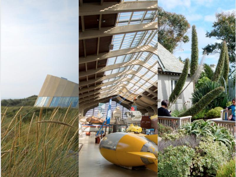 Les 10 lieux incontournables à voir absolument dans le Cotentin