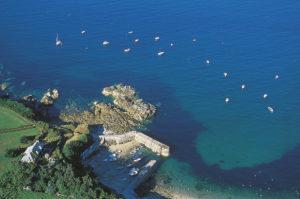 Port racine @C P. Courault - Cotentin Tourisme